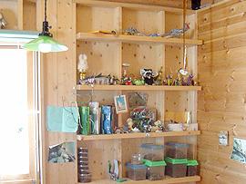 大好きな虫の飼育観察も壁面収納棚で